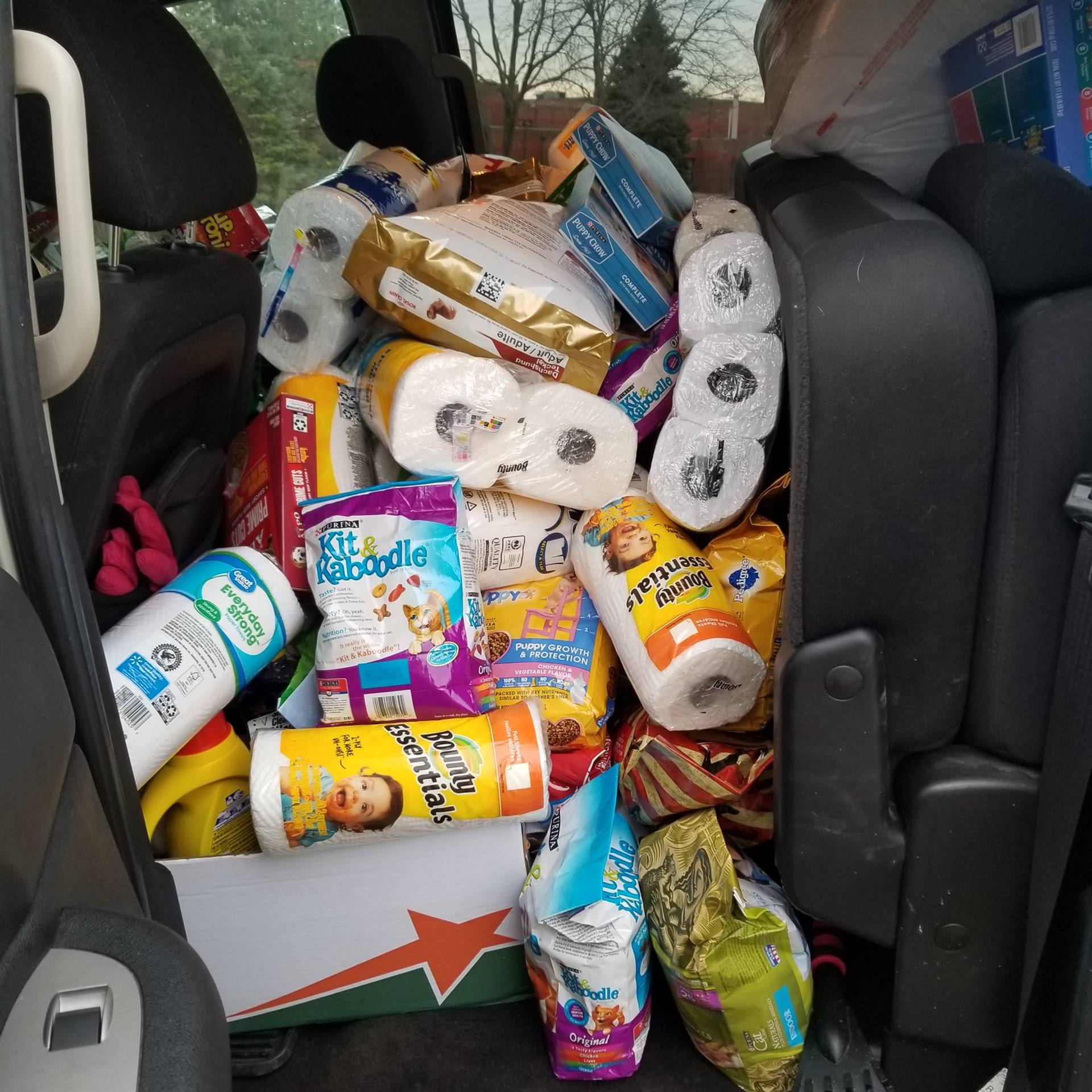 Donations to the Humane Society